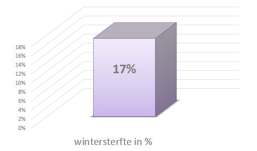bijen bijensterfte wintersterfte 2016 2017
